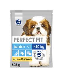 PERFECT FIT (Junior) 5x825g turtingas vištiena - sausas maistas mažų veislių šunims