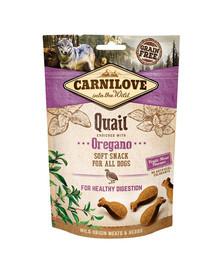 CARNILOVE Semi moist snacks subtilūs skanėstai su putpelėmis ir raudonėliais 200 g