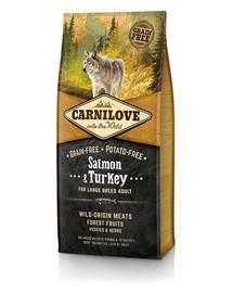 CARNILOVE Pies Adult Large Breed Łosoś/Indyk 1,5 kg