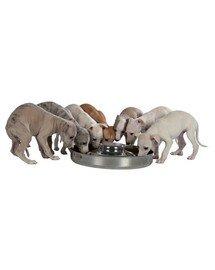 Trixie dubenėlis šuniukams 4.0 l / 38 cm