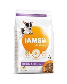 IAMS ProActive Health Puppy & Junior Small & Medium Breed Chicken 3 kg