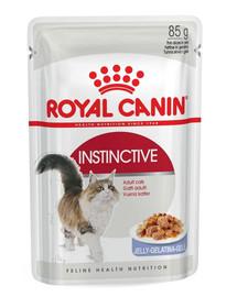 Royal Canin Instinctive drebučiuose 12 X 85 g