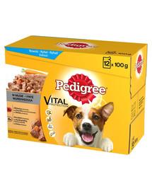 PEDIGREE konservai šunims su jautiena ir vištiena 12 x 100 g x4