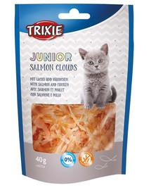 TRIXIE Junior Salmon Clouds skanėstas su lašiša 40 g