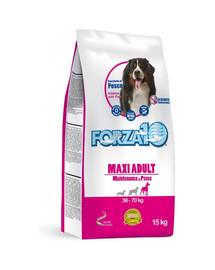 FORZA 10 Maxi su žuvimi sausas maistas suaugusių didelių veislių šunims 15 kg