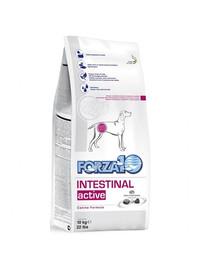FORZA 10 Intestinal Active Dieta Maisto papildas šunų virškinimo problemoms gydyti 4 kg