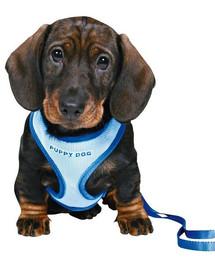 Trixie Puppy Soft žydros petnešos su pavadėliu