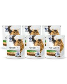 PERFECT FIT Cat 6x750 g Senior 7+