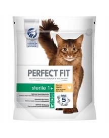 PERFECT FIT (Sterile 1+) 4,5kg praturtintas  vištiena - sausas šunų maistas