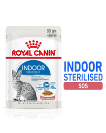 ROYAL CANIN Sterilised Indoor in Gravy 12 x 85 g šlapias maistas kastruotoms naminėms katėms