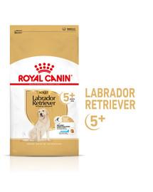 ROYAL CANIN Labrador Retriever Adult 5+ 12 kg sausas maistas suaugusiems Jorkšyro terjerams, vyresniems nei 5 metai