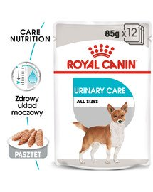 ROYAL CANIN Urinary Care konservai 85 g x 12