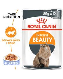Royal Canin Intense Beauty drebučiuose 12 X 85 g