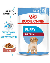 ROYAL CANIN Medium Puppy 10x140 g