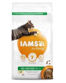 IAMS for Vitality suaugusioms katėms su šviežia vištiena 3 kg