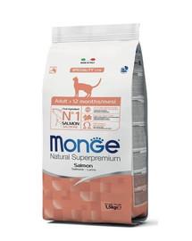 MONGE Cat Salmon maistas suaugusioms katėms su lašiša 1,5 kg