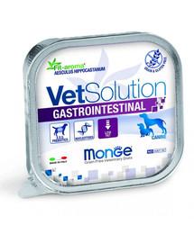 MONGE Vet Solution Dog Gastrointestinal 150 g