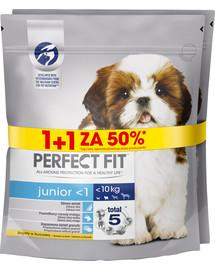 PERFECT FIT Junior XS - S 850 g x 3 vnt. Šunų maistas su vištiena 1 + 50%