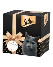 SHEBA Kalėdinė dovanų dėžutė