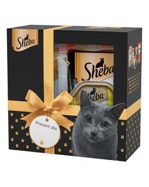 ŠEBA Šventinis kačių skanėstų rinkinys