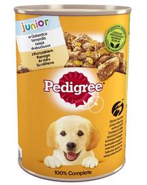 PEDIGREE Junior skardinė 12x400g - šlapias šunų maistas drebučiuose vištiena + NEMOKAMOS kojinės