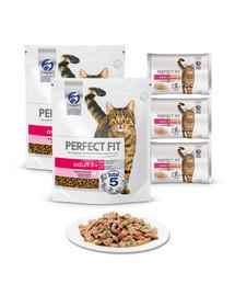 PERFECT FIT (Adult 1+) 2 x 750g maistas turtingas lašišu - sausas maistas suaugusioms katėms + konservai 12x85g - šlapias maistas katėms padaže (su vištiena ir žirneliais, su jautiena ir morkomis)