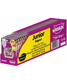 WHISKAS Junior Troškinys 28x85g - šlapias maistas katėms drebučiuose vištiena + kačių namelis