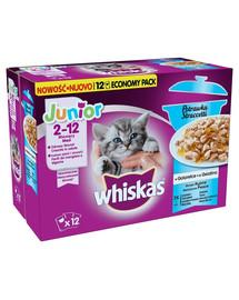 WHISKAS Junior Troškinys- Žuvų skoniai drebčiuose 48x85 g + namukas katei