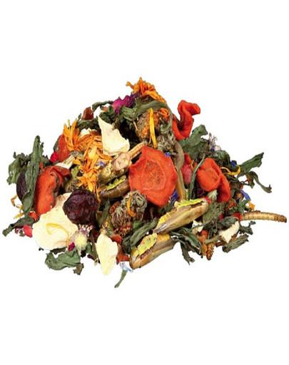 Trixie Mix natūralus Barzdotosios agamos maisto mišinys 100 g
