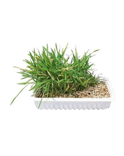 Trixie žolė katėms 130 g