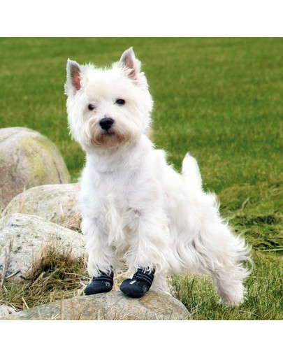 Trixie apsauginiai batai Walker Active M 2 vnt.
