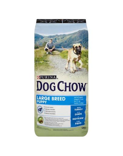 PURINA Purina dog chow puppy large breed su kalakutiena 14 kg
