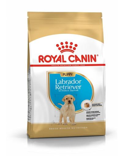 Royal Canin Labrador Retriever Junior 3 kg