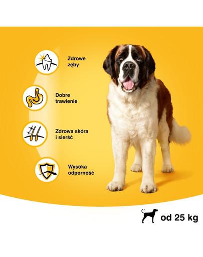 Pedigree Vital Protecion ėdalas su jautiena suagusiems didelių veislių šunims 15 kg