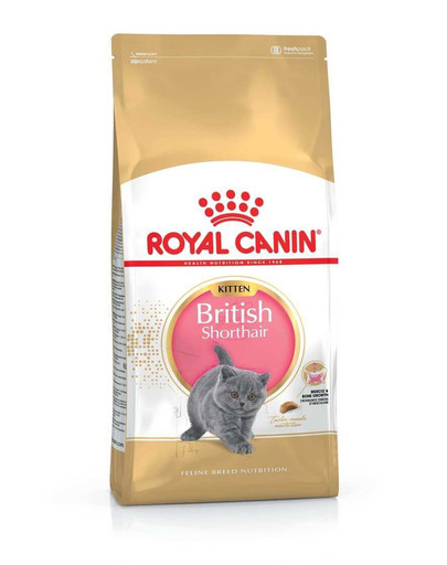 Royal Canin Kitten British Shorthair 0.4 kg