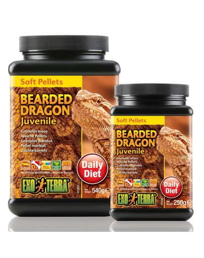 Exo Terra Bearded Dragon Juvenile maistas jaunai barzdotojai agamai 250 g