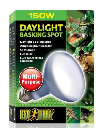 Exo Terra Day Glo Basking Spot lemputė 150W