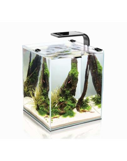 AQUAEL akvariumas Shrimp 20 (250X250X300)