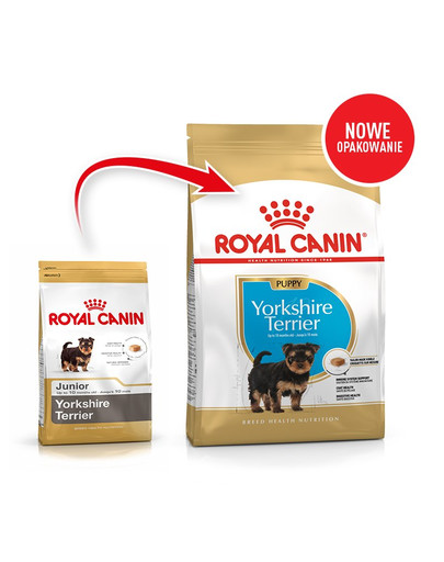 Royal Canin Yorkshire Terrier Junior 0,5 kg