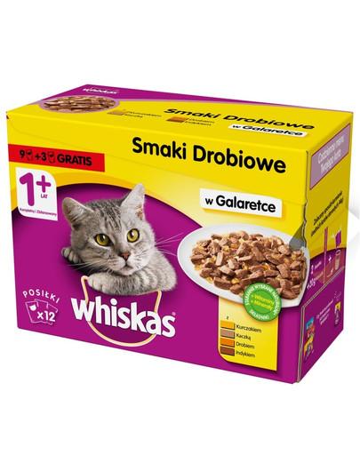 WHISKAS konservuoto kačių maisto rinkinys su paukštiena 12 x 100 g