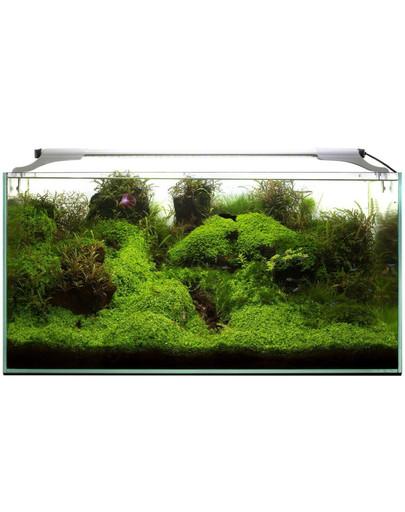 Aquael Leddy Slim 10W Sunny 50-70 cm LED šviestuvas akvariumui