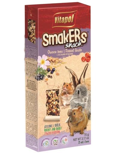 VITAPOL Smakers graužikams su miško uogomis 2vnt.