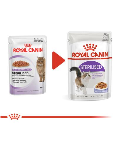 ROYAL CANIN Cat Sterilised konservai drebučiuose 12 x 85 g