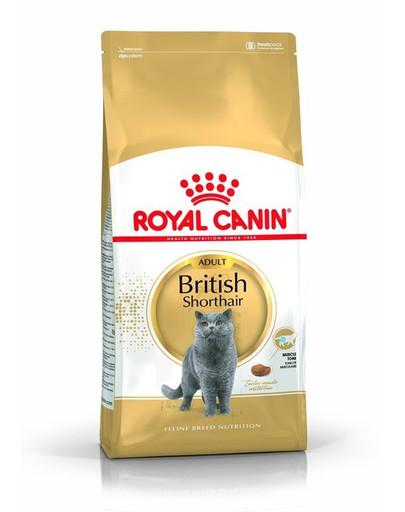 Royal Canin British Shorthair Adult 4 kg